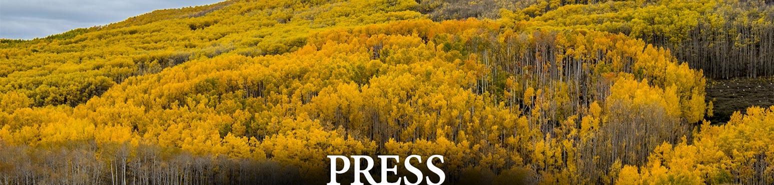 <span> Recent </span> Press
